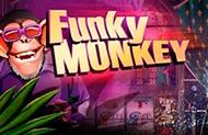 Автомат Вулкан Funky Monkey на деньги