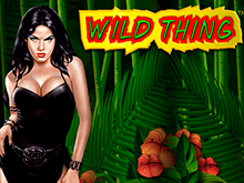 Автомат на деньги Wild Thing от казино Вулкан