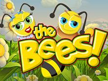 Автомат The Bees в казино на деньги в онлайн режиме